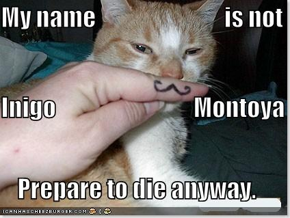 funny-pictures-mustached-princess-bride-cat